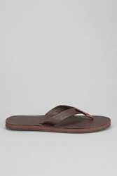 Rainbow Classic Leather Thong Sandal Chocolate