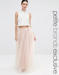 True Decadence Petite Tulle Maxi Skirt Cream