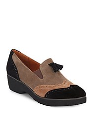 Gentle Souls Briminee Suede Oxfords Black Multi