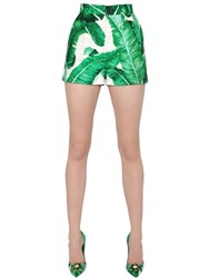 Dolce And Gabbana Leaves Cotton Silk Brocade Shorts