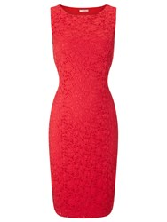 Precis Petite Coral Jasmin Lace Dress Red