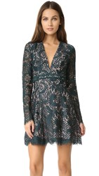 Style Stalker Davis Lace Dress Peacock