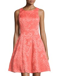 Maggy London Rose Jacquard Sleeveless Fit And Flare Dress Coral Reef