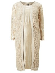 Adrianna Papell Plus Size Shimmer Sheath Dress And Embroidered Lace Coat Champagne