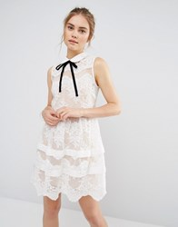 Endless Rose Contrast Collar Tierred Lace Mini Dress White