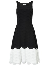 Jacques Vert All Over Scallop Dress Black White