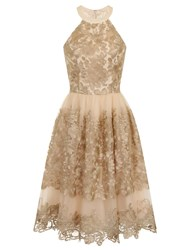Chi Chi London Metallic Embroidered Prom Dress Gold Metallic