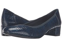 David Tate Piper Navy Croc Patent Print Women's Shoes