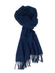 Paul Costelloe Plain Blue Scarf