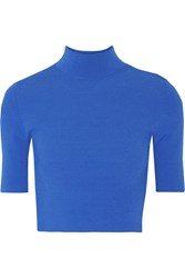 Autumn Cashmere Cropped Ribbed Jersey Turtleneck Top Blue