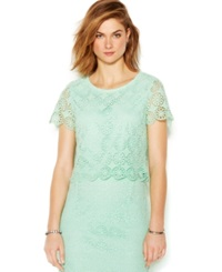 Bar Iii Short Sleeve Lace Crop Top Garden Mint