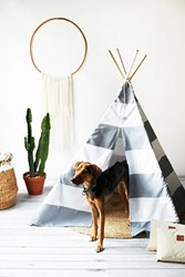 Max Bone Womens Big Dog Tee Pee
