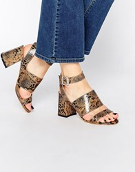 Truffle Collection Newdy Cross Strap Mid Heeled Sandals Snake Pu Multi
