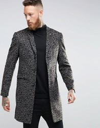 Noose And Monkey Leopard Print Overcoat Gold