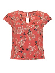 Trollied Dolly Hole Lot Of Fun Top Coral