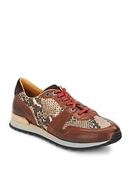Robert Graham Amazon Embossed Leather Paneled Sneakers Brown Taupe