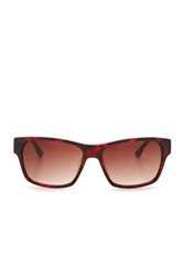 Diesel Unisex Plastic Sunglasses Brown