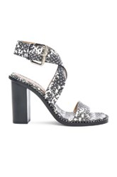 Proenza Schouler Vipera Wrap Around Heels In Animal Print Black White