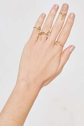 Nasty Gal Leaf 'Em Hanging Ring Set