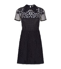 Red Valentino Contrast Lace Dress Female Blue