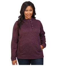 Columbia Plus Size Darling Days Pullover Hoodie Dusty Purple Heather Women's Sweatshirt