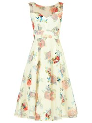 Jolie Moi Floral Lace Printed Fit And Flare Dress
