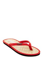 Parke And Ronen Coconut Leaf Beach Flip Flop Red