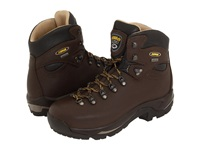 Asolo Tps 520 Gv Chestnut Men's Hiking Boots Brown