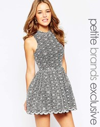 John Zack Petite Premium Lace Prom Dress With Cut Out Back Grey