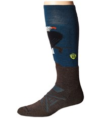 Smartwool Phd Ski Medium Charley Harper Glacial Bay Eagle Deep Sea Men's Knee High Socks Shoes Navy