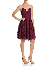 Aqua Lace Cami Dress Wine Wine