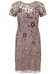 Adrianna Papell Short Sleeve Beaded Cocktail Dress Stone Pink