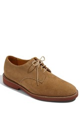 Men's Neil M 'Cambridge' Oxford Online Only