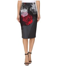 Ellen Tracy Placement Print High Waist Pencil Skirt Bloom Combo Women's Skirt Pink