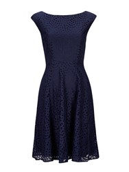 Wallis Petite Navy Lace Fit And Flare Dress