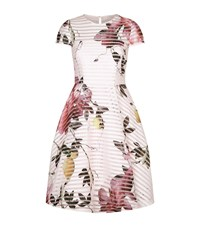 Ted Baker Camari Floral Mesh Dress Female Ivory