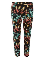 Dorothy Perkins Floral Cotton Sateen Crop Multi Coloured