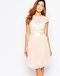 Elise Ryan Midi Skater Dress With Floral Lace Applique Blush