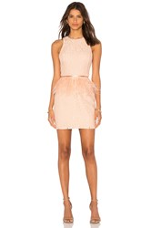 Endless Rose Lace Feather Peplum Dress Pink