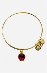 Women's Alex And Ani Birthstone Expandable Wire Bangle February Amethyst