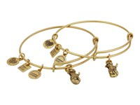 Alex And Ani Charity By Design Side By Side Set Of 2 Expandable Wire Bangles Shiny Gold Bracelet Metallic