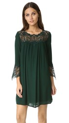 Bb Dakota Elizabeth Lace Dress Hunter Green