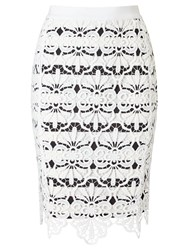 Adrianna Papell Stripe Lace Pencil Skirt White