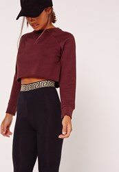 Missguided Petite Raglan Sleeve Crop Raw Hem Sweatshirt Burgundy Red