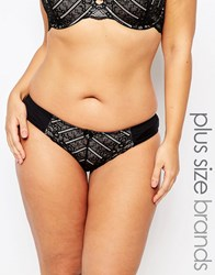 Marie Meili Curves Pailey Brief Black