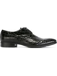 Pollini Embossed Derby Shoes Black