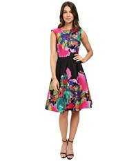 Tahari By Arthur S. Levine Printed Jacquard Fit And Flare Black Flamingo Lime Women's Dress Multi