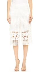 Endless Rose Lattice Lace Culotte Pants White
