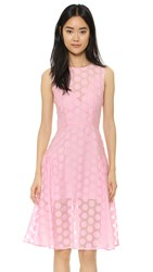 Line And Dot Polka Dot Dress Pink