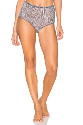 Only Hearts Club Python Stretch Lace High Waisted Brief Pink